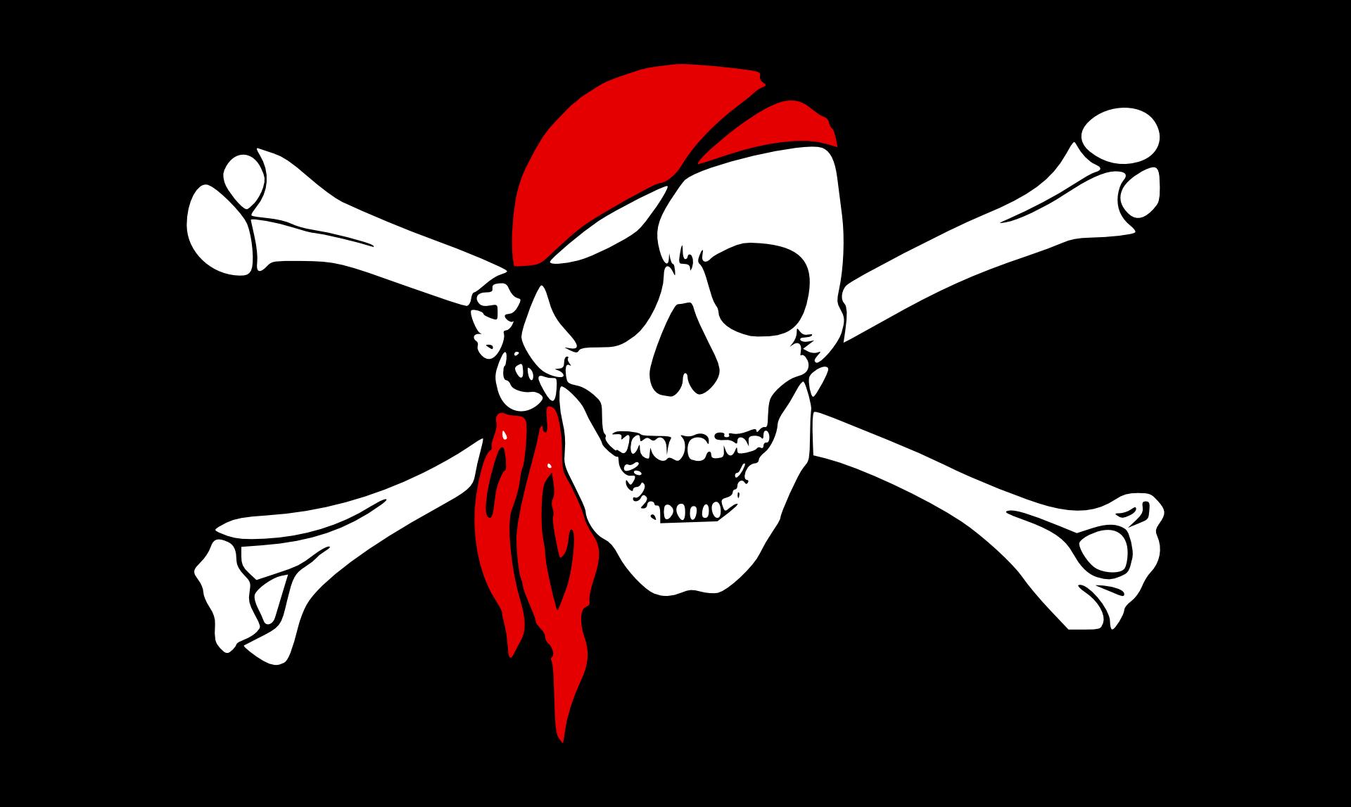 pirate flag,skull vector