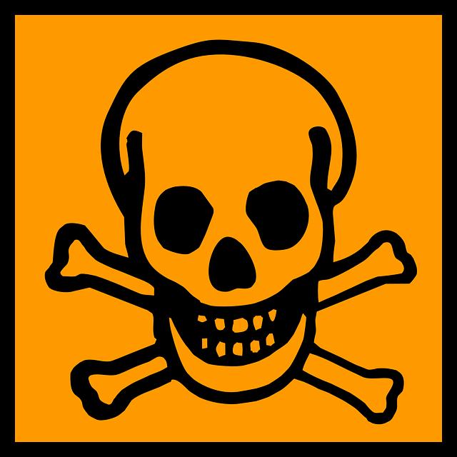 Skull designs vector