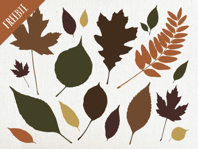 Vector Fall Leaves Freebie
