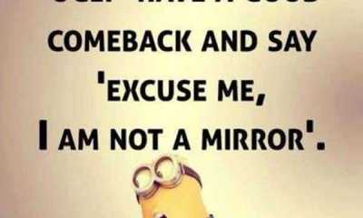 Funny Quotes and Sayings I am Not Mirror Someone Call You Ugly