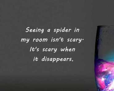 Funny Quotes How To Be Scary When Spider Disappears