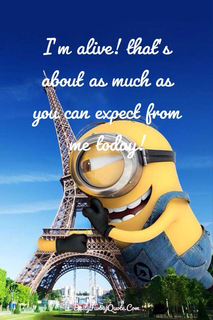 Minions Quotes 40 Funny Quotes Minions And Short Funny Words 2