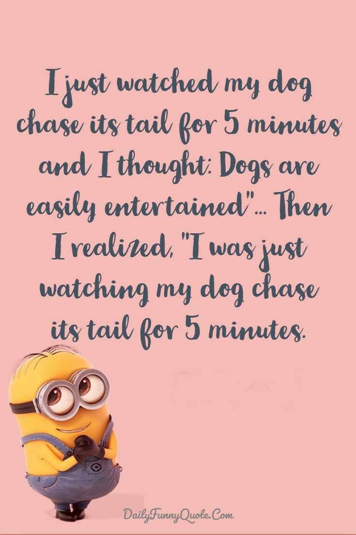 Minions Quotes 40 Funny Quotes Minions And Short Funny Words 31