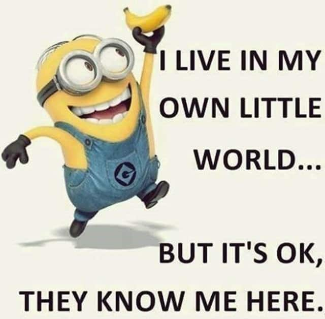 27 Funny Quotes Inspirational That will Inspire You — Minions Quotes 2