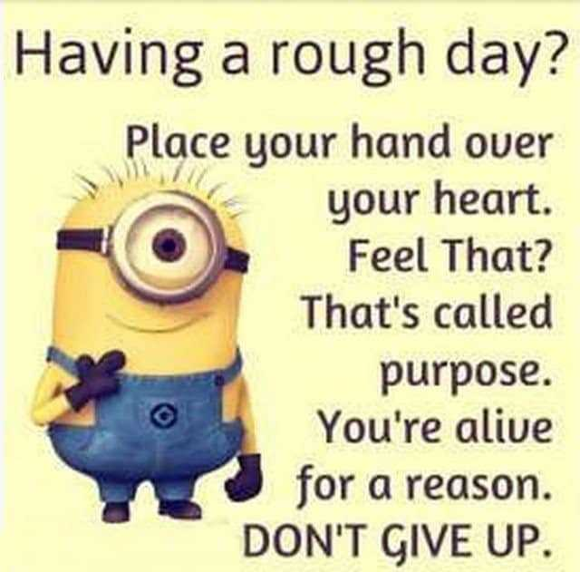 27 Funny Quotes Inspirational That will Inspire You — Minions Quotes 5