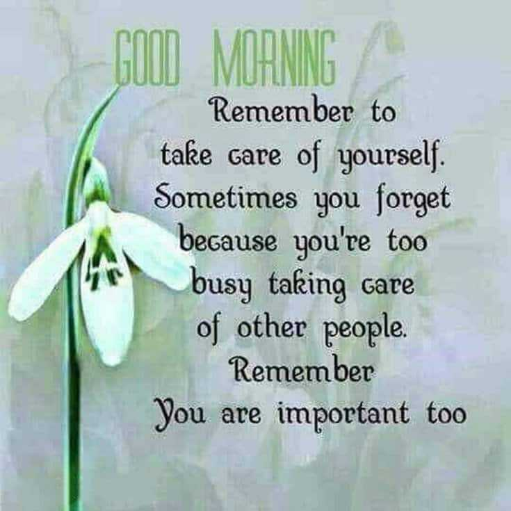 100 Good Morning Quotes with Beautiful Images 10