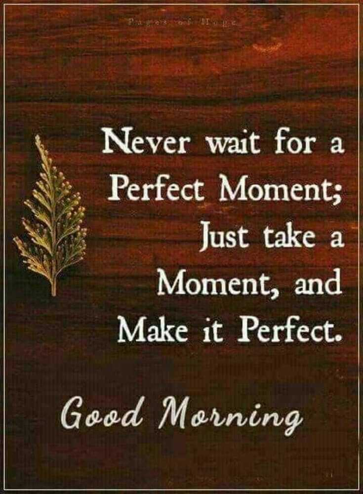 100 Good Morning Quotes with Beautiful Images 4