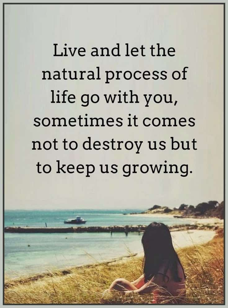 57 Beautiful Short Life Quotes Quotes on Life Lessons 51