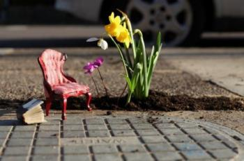 Guerilla Gardener Plants Joy in Potholes
