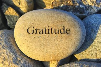 What Does A Grateful Organization Look Like?