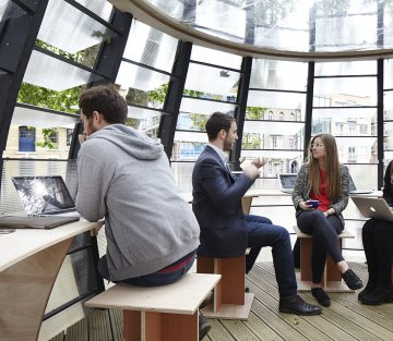 Co-Working Spaces in Trees