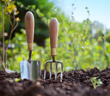 Will Rosenzweig: Business Lessons from a Quiet Gardener