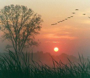 World At Dawn
