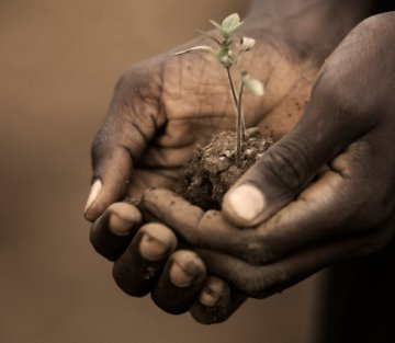 The Soil's Story is the Story of Us