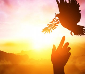 We Must Deepen Our Capacity for Healing