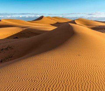 Once I Took a Week Long Walk in the Sahara