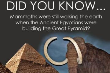 Mammoths Still Walked the Earth When the Great Pyramid Was Being Built