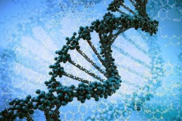DNA Coding