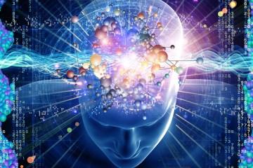 Quantum consciousness