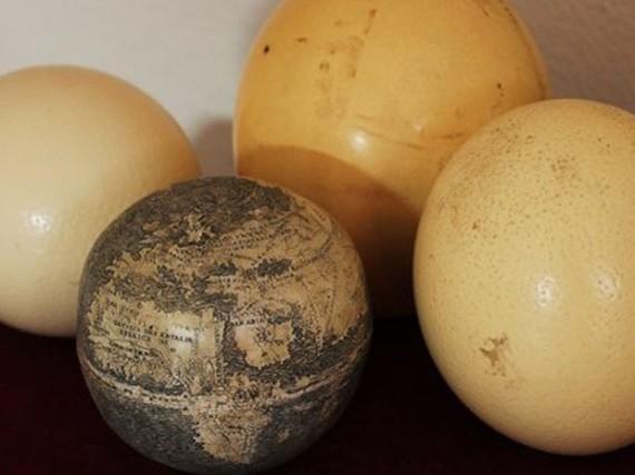 Ostrich egg globe 2