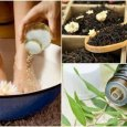 home remedies for sweaty feet