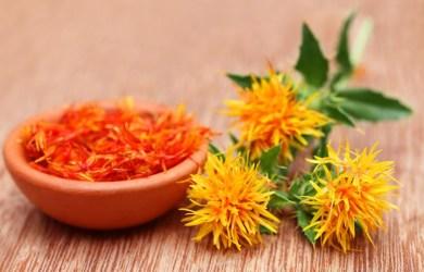 Safflower Seed Oil Benefits