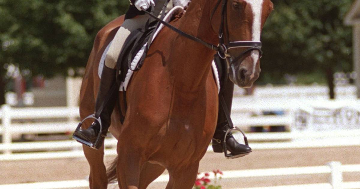 Mchenry County Horse Events Under Scrutiny