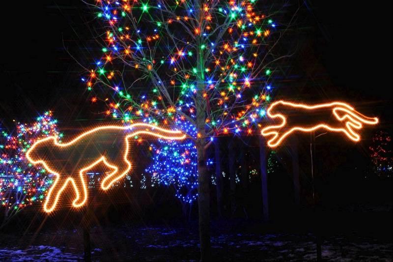Brookfield Zoo Holiday Lights