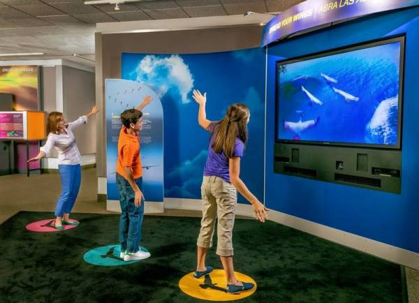 Expand your horizons at these five museums' creative new ...