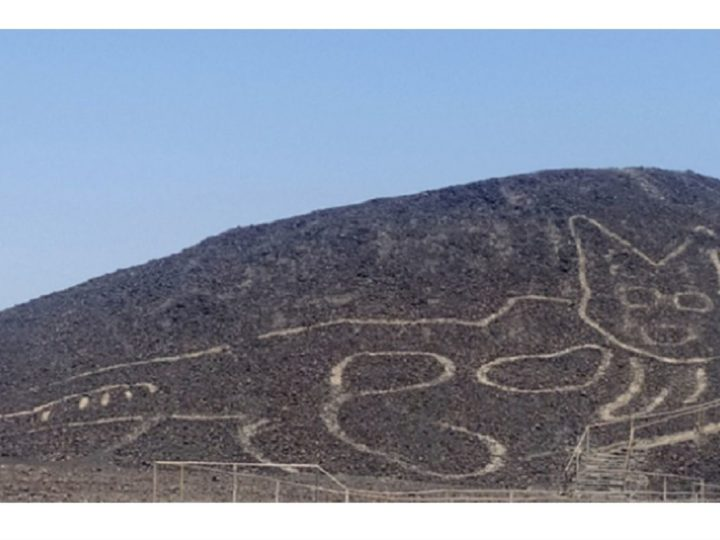 2,000 Year Old Cat Geoglyph Found Chilling on Peru's Nazca Lines