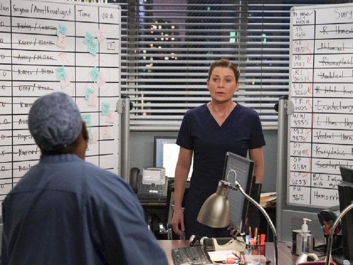Grey's Anatomy on TF1: which series to replace on Wednesday, November 25? – News Series