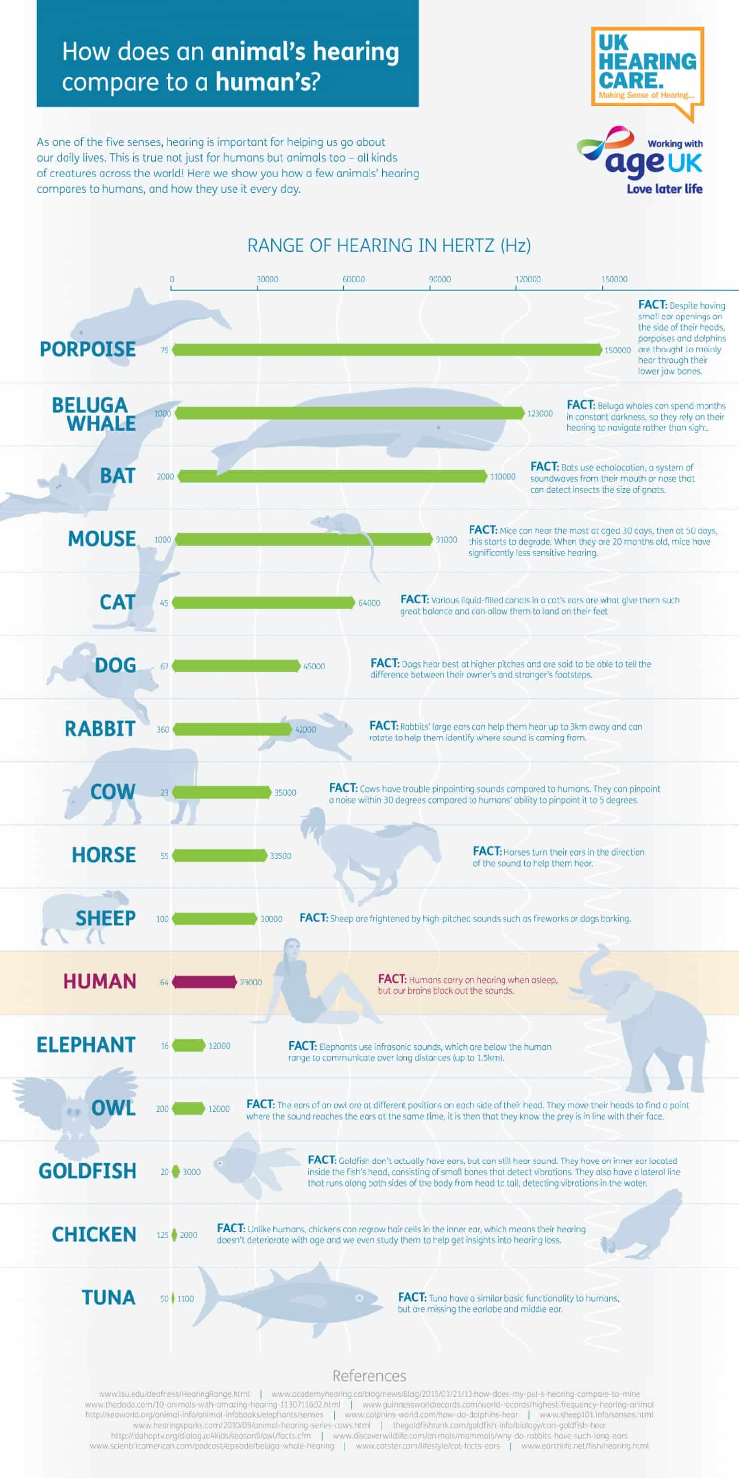 How A Mouse S Hearing Compares To A Human S