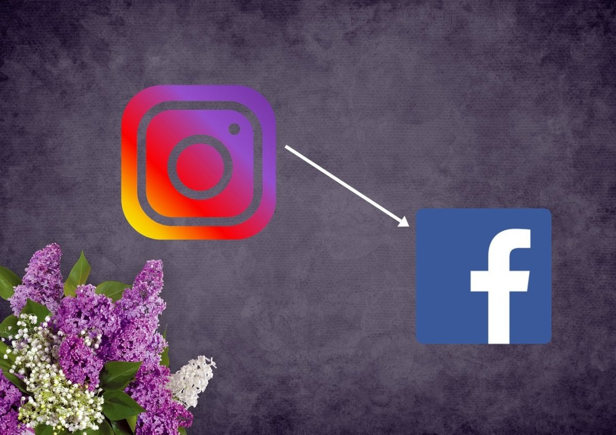 Facebook To Instagram 12