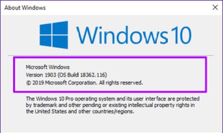 Windows Sandbox Missing Issue 7
