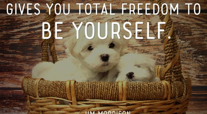 A friend is someone who gives you total freedom to be yourself. ~ Jim Morrison