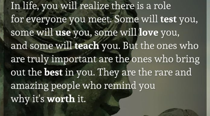 In life, you will realize there is a role for everyone you meet. Some will test you, some will use you, some will love you, and some will teach you. But the ones who are truly important are the ones who bring out the best in you. They are the rare and amazing people who remind you why it's worth it.