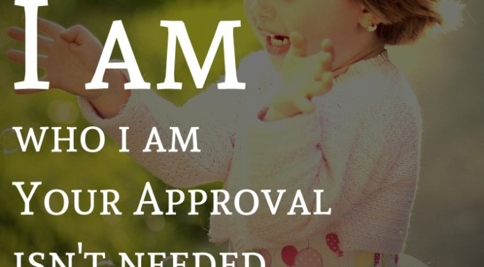 I am who I am Your Approval isn't needed.