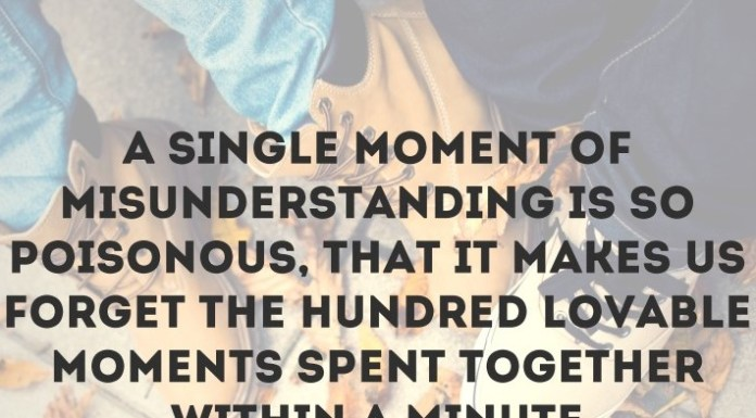 A single moment of misunderstanding is so poisonous, that it makes us forget the hundred lovable moments spent together within a minute.