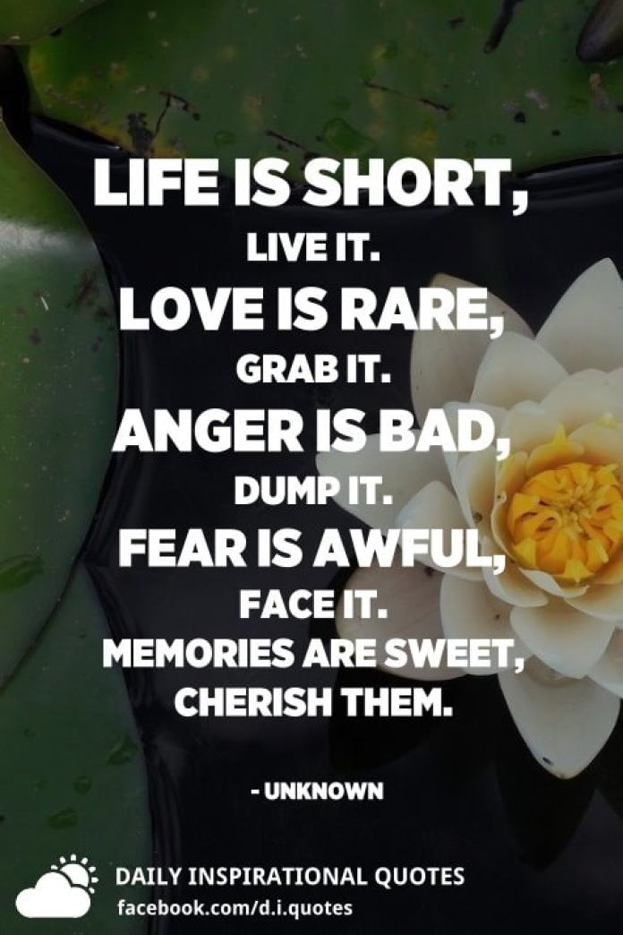 Life is short, live it. Love is rare, grab it. Anger is bad, dump it. Fear is awful, face it. Memories are sweet, cherish them. - Unknown