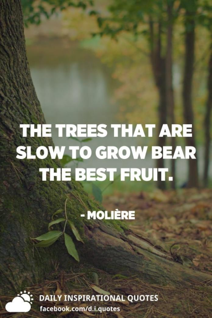 The trees that are slow to grow bear the best fruit. - Molière