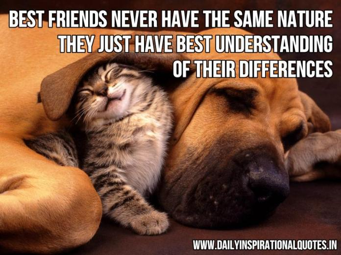 Best friends never have the same nature. they just have best understanding of their differences. ~ Anonymous
