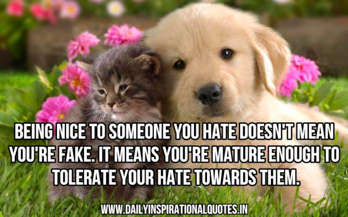 Being nice to someone you hate doesn't mean you're fake. it means you're mature enough to tolerate your hate towards them. ~ Anonymous