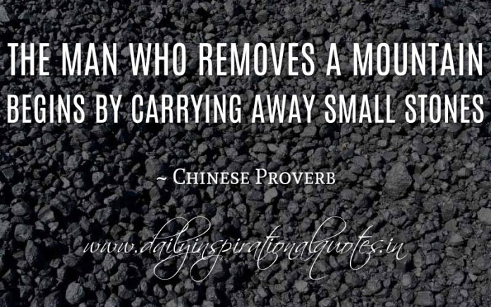 The man who removes a mountain begins by carrying away small stones. ~ Chinese Proverb