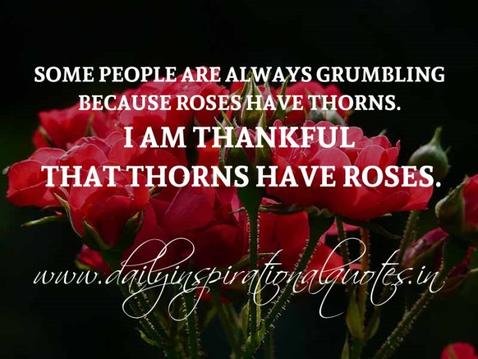 Some people are always grumbling because roses have thorns. I am thankful that thorns have roses. ~ Anonymous