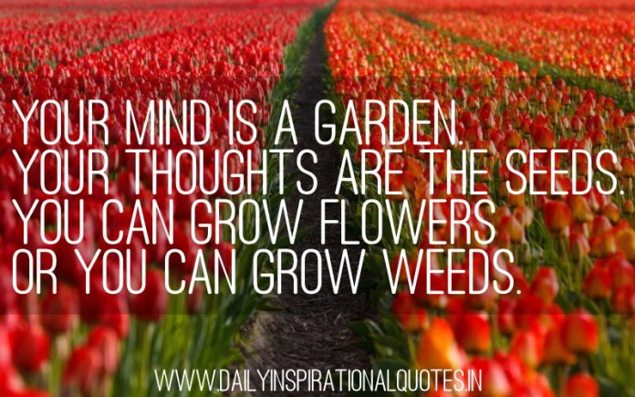 Your Mind Is A Garden. Your Thoughts Are The Seeds. You Can Grow Flowers Or You Can Grow Weeds. ~ Anonymous