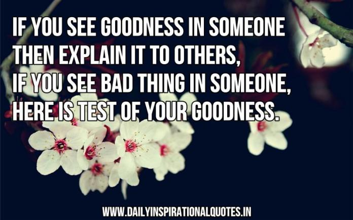 If you see goodness in someone then explain it to others, if you see a bad thing in someone, here is test of your goodness. ~ Anonymous