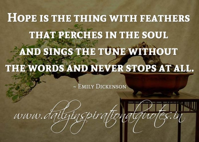 Hope is the thing with feathers that perches in the soul and sings the tune without the words and never stops at all. ~ Emily Dickenson
