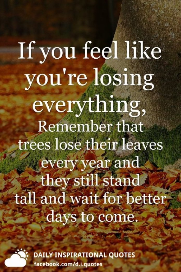 If you feel like you're losing everything, Remember that trees lose their leaves every year and they still stand tall and wait for better days to come.