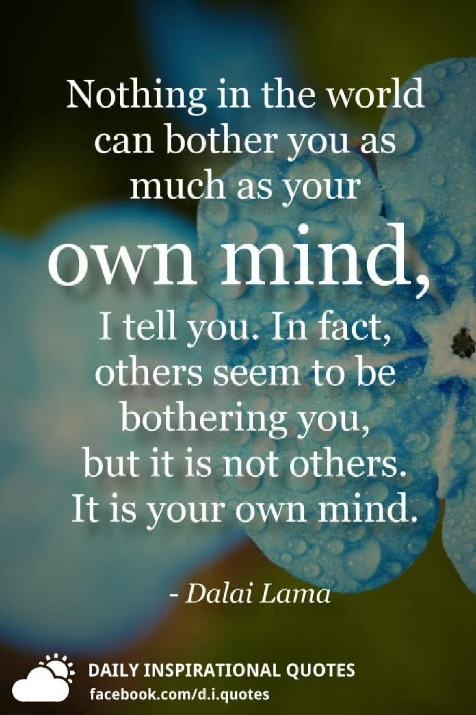 Nothing in the world can bother you as much as your own mind, I tell you. In fact, others seem to be bothering you, but it is not others. It is your own mind. - Dalai Lama