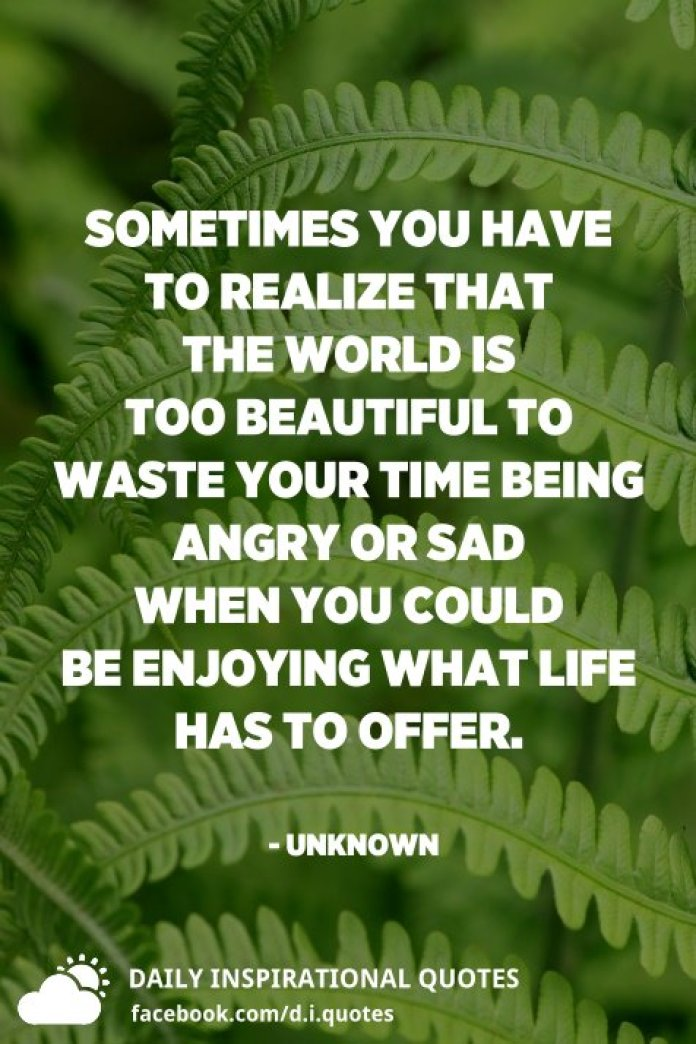 Sometimes you have to realize that the world is too beautiful to waste your time being angry or sad when you could be enjoying what life has to offer. - Unknown